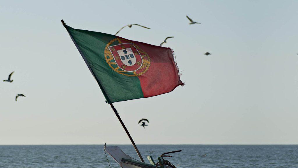 SEO Portugal